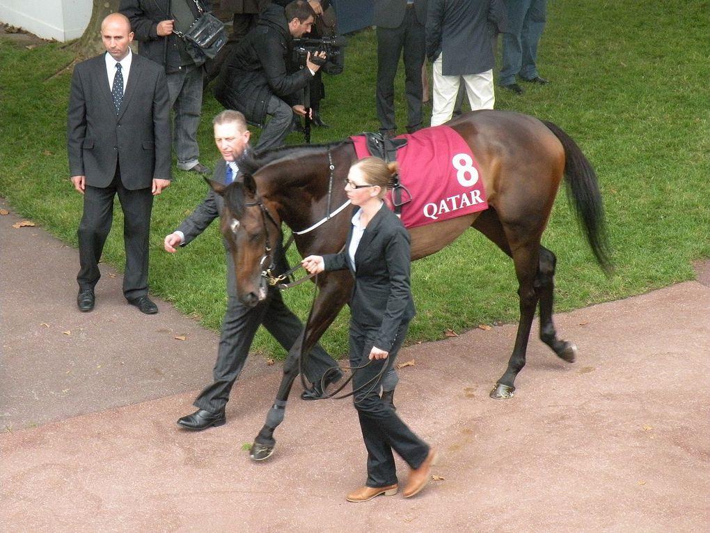 Album - 2013.09.15-Longchamp