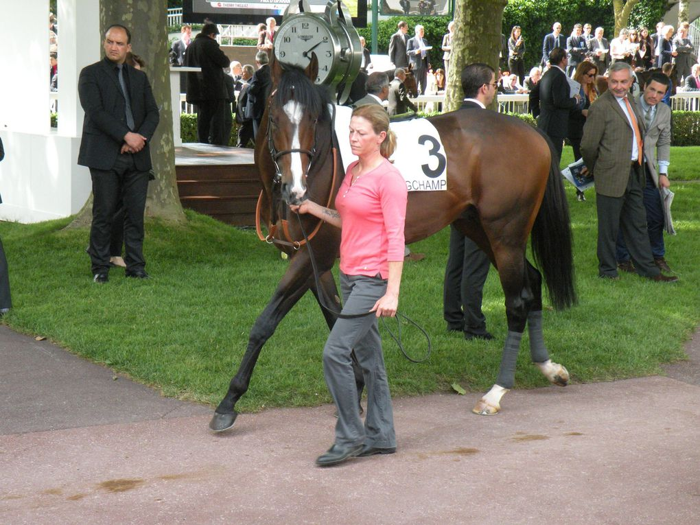 Album - 2014-05-25-Longchamp
