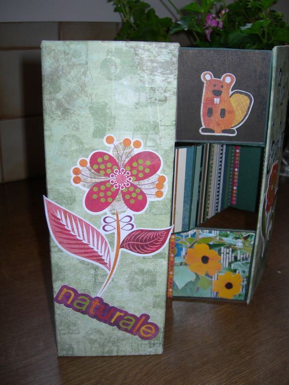 Mes divers bricolages :