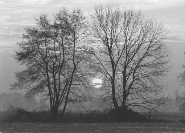 photos N & B scannées de Jean JUNDT