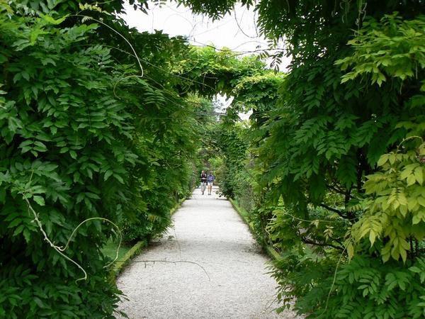 Parc de Bagatelle le 1ier juin 2008