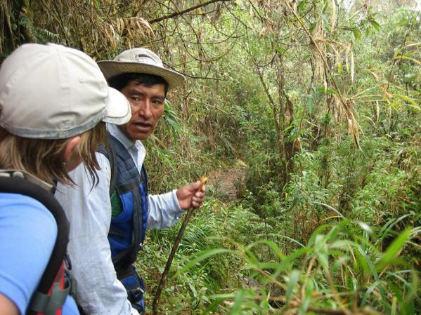 Pour clotûrer 2 années de formation au sein de l'équipe nationale alpinisme de la FFCAM en terrain montagne (artif, mixte, rocher, goulotte, grandes voies...), nous partons en Bolivie pour clôturer et mettre ces stages en pratique.