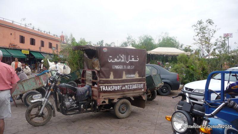 Album - Maroc-2010--insolite
