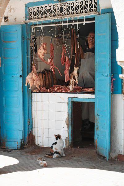 Voici quelques unes des photos prises par moi ou mon homme au Maroc. Bateaux de pêche, oiseaux, rues, étals, un petit florilège qui n'est pas figé, car j'en ai tellement que l'album changera au gré de mes humeurs !