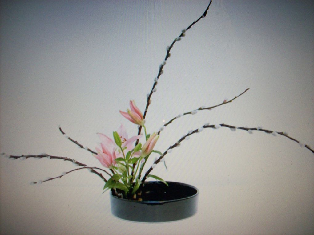 j'ai participé à des séances d'Ikébana voici de jolies créations prises pendant une exposition!!!!!