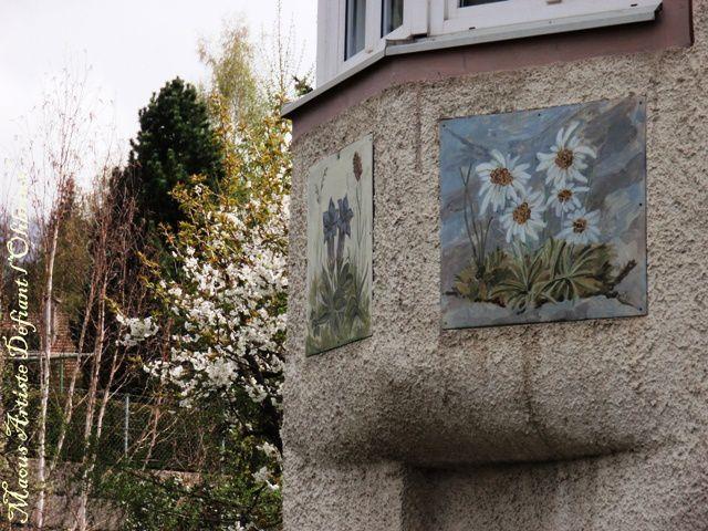 Un album de photographies sur le Tyrol et sur ses traditions !