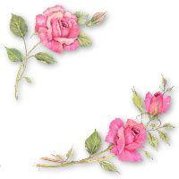 Toutes ces fleurs parlent à mon coeur !car en elles vibrent l'amour et la beauté