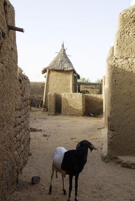 Album - Mali janvier 2010
