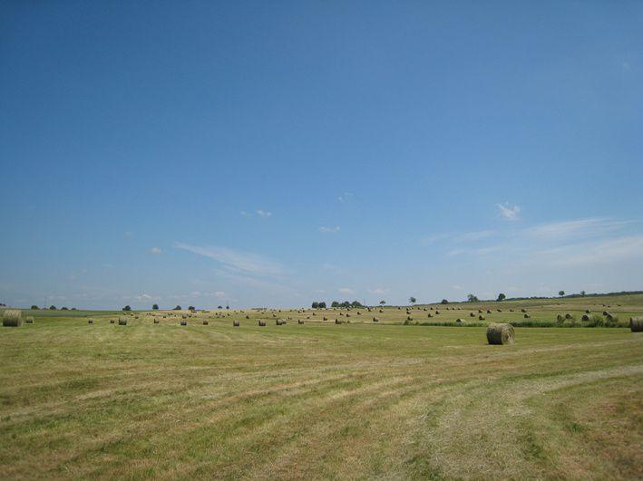 Photos de paysages d'Insviller