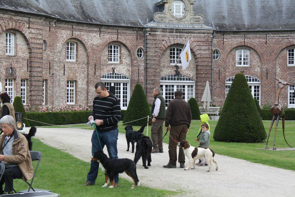 Album - Voyage en Belgique 2013