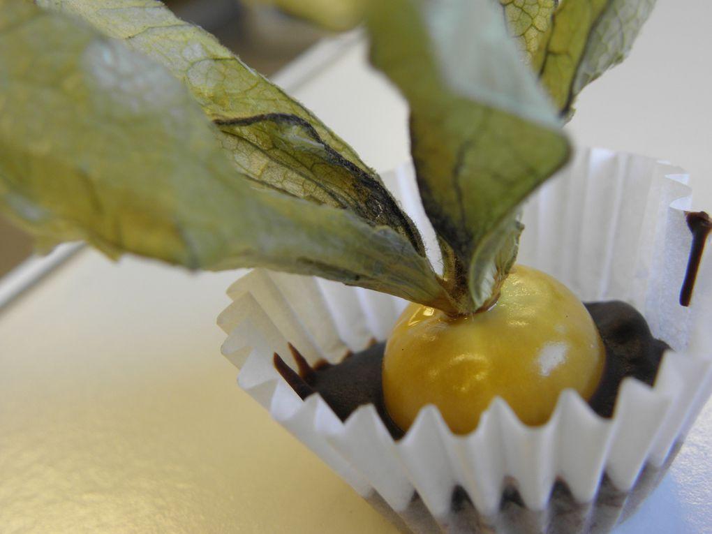 Album - Soiree dégustation découverte physalis au chocolat