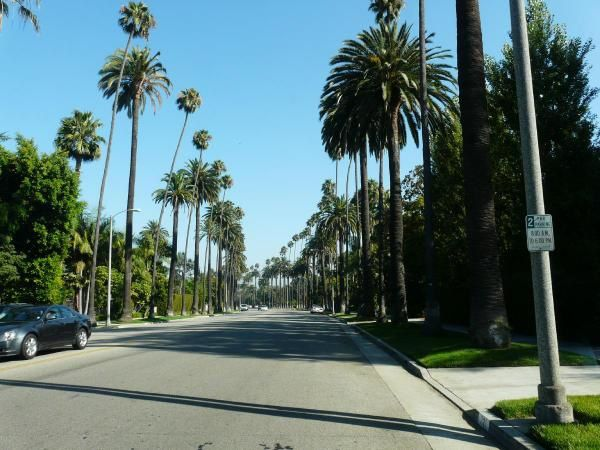 Album - Hollywood - Bervly Hills
