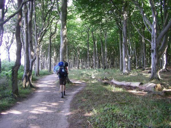 Unsere erste Wanderstrecke. Der europäische Wanderweg E9 führt von Hendaye (F) bis Braniewo (PL). Wir sind ihn von Travemünde bis nach Warnemünde in fünf Etappen gelaufen.