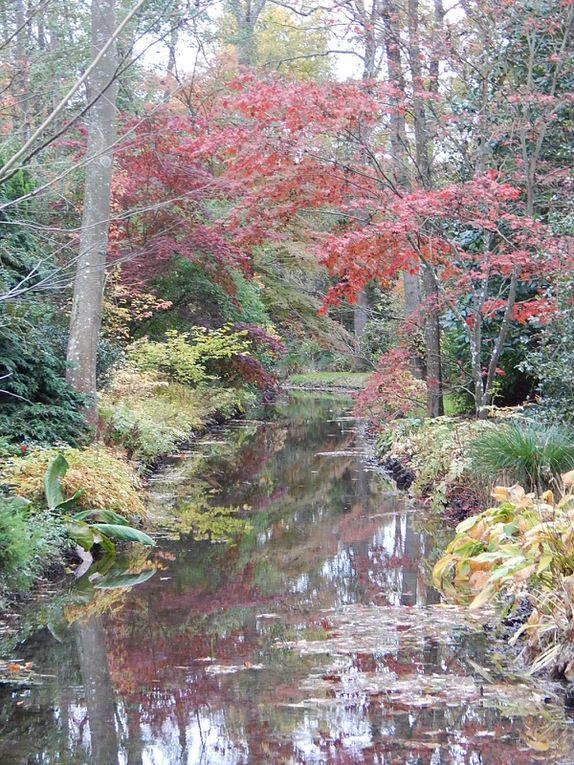 Album - Jardin: Arboretum-Pres-de-Culands