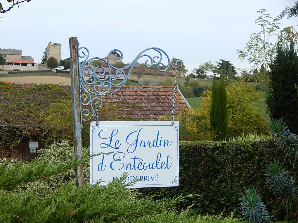 Album - Jardin-d-Enteoulet