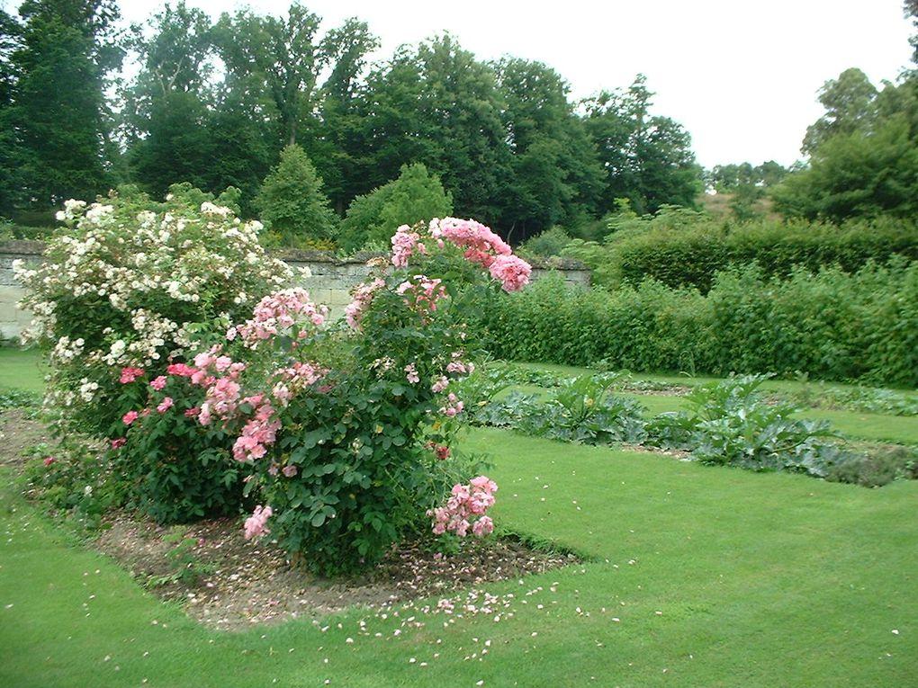 Album - Jardin du Plessis-Sasnieres