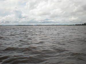 """Immensité, paix et beauté, l'intensité d'une nature aux sensations pures, sur les rives du fleuve Amazone. Grande et mystérieuse forêt, labyrinthe des """"igarapés"""", us et coutumes des peuplades locales, symphonie de couchers de soleil, une incurs"""