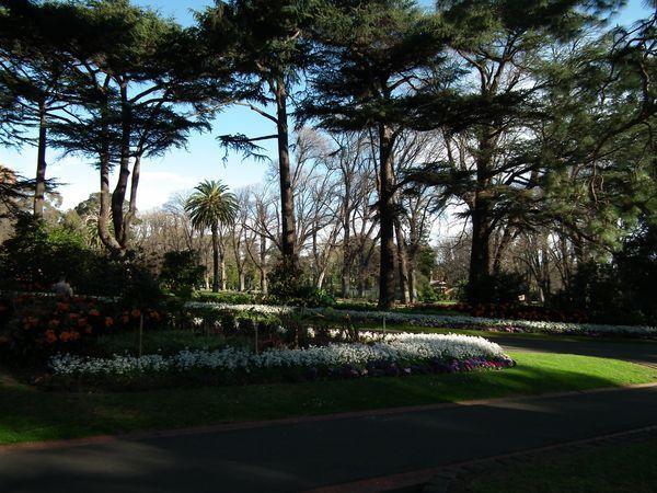 My second WE in Melbourne - temps mitigé à St Kilda le samedi et Sunny sunday dans les Fitzroy Gardens!