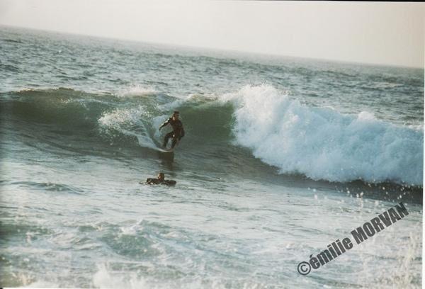 Album - SURF