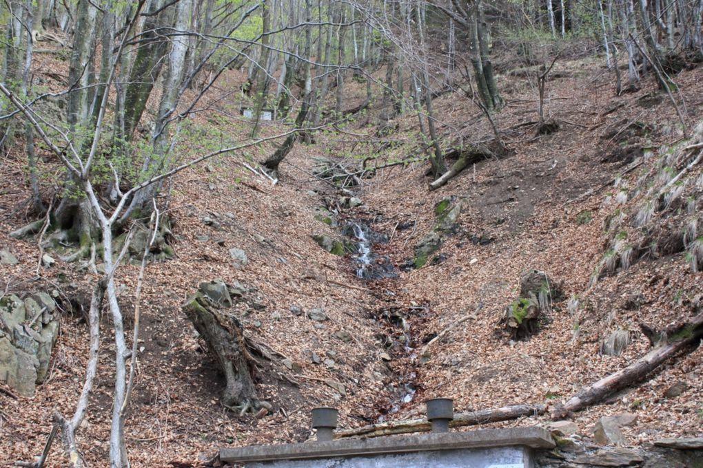 Passeggiata sopra Camorino del 13.04.2009