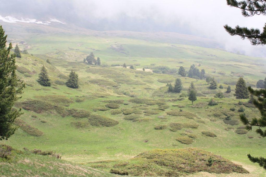 Escursione del 11.06.2009, da Piera a Dotterio (capanna Dötra) fino ad Acquacalda passando per la Croce Portera