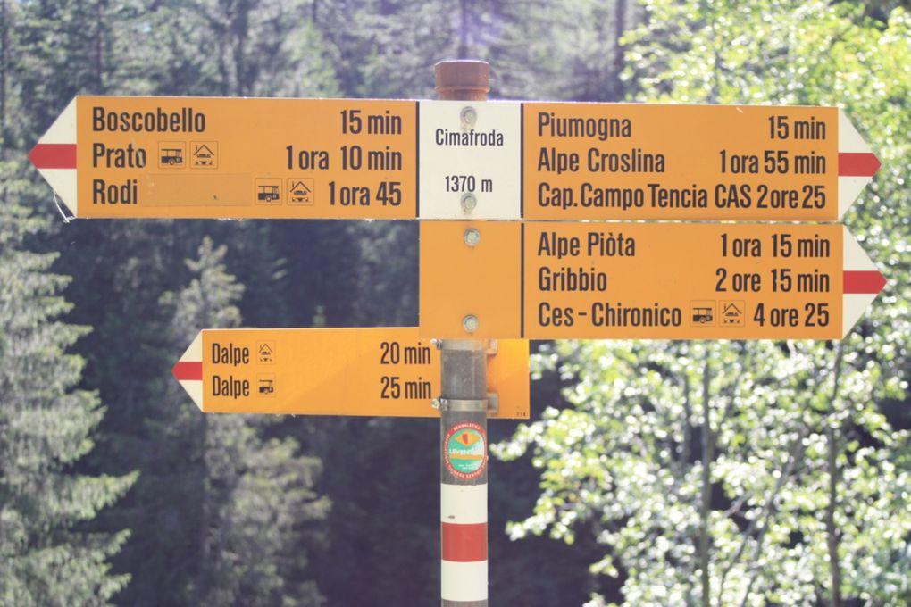 Escursione del 29.06.2009 alla capanna Campo Tencia e al laghetto Morghirolo