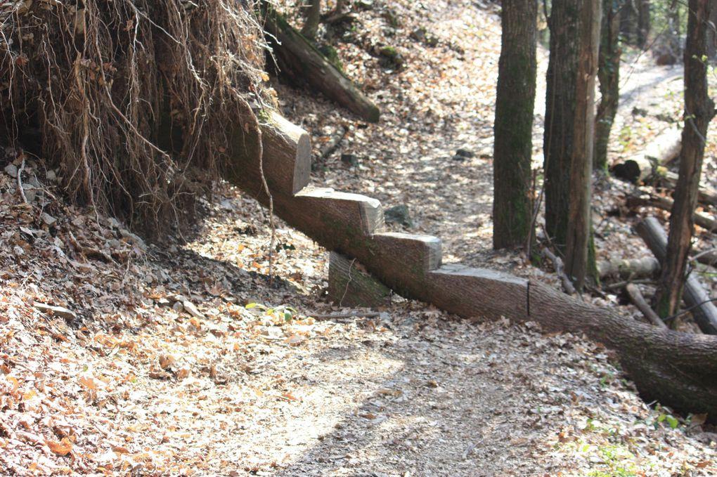 Foto dell'escursione del 09.04.2010 ad anello da Morcote passando per Carona, Torello, parco San Grato