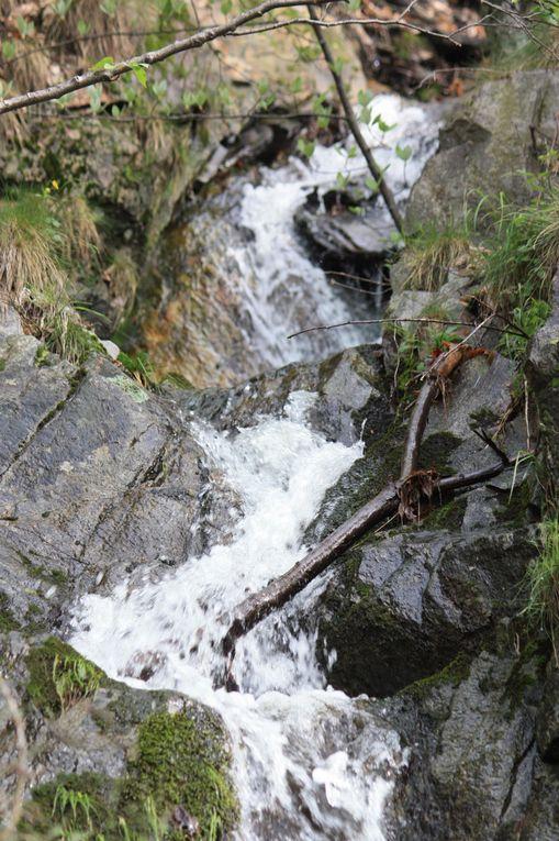 Foto dell'escursione da Isone alla capanna Cremorasco del 15.05.2010