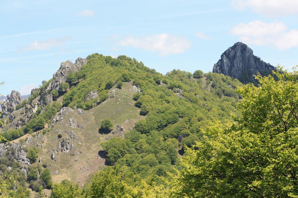 Album fotografico dell'escursione del 23.05.2010 da Bré (Lugano) al Monte Boglia e alpe della Bolla.