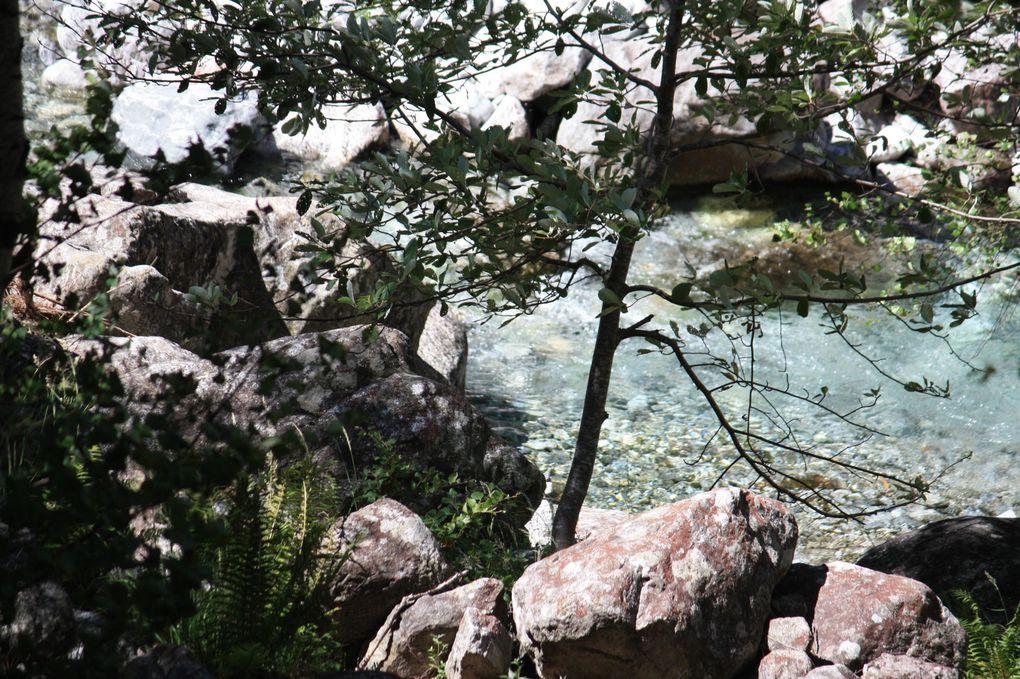 Album dell'escursione al laghetto Tomeo da Broglio (Vallemaggia).