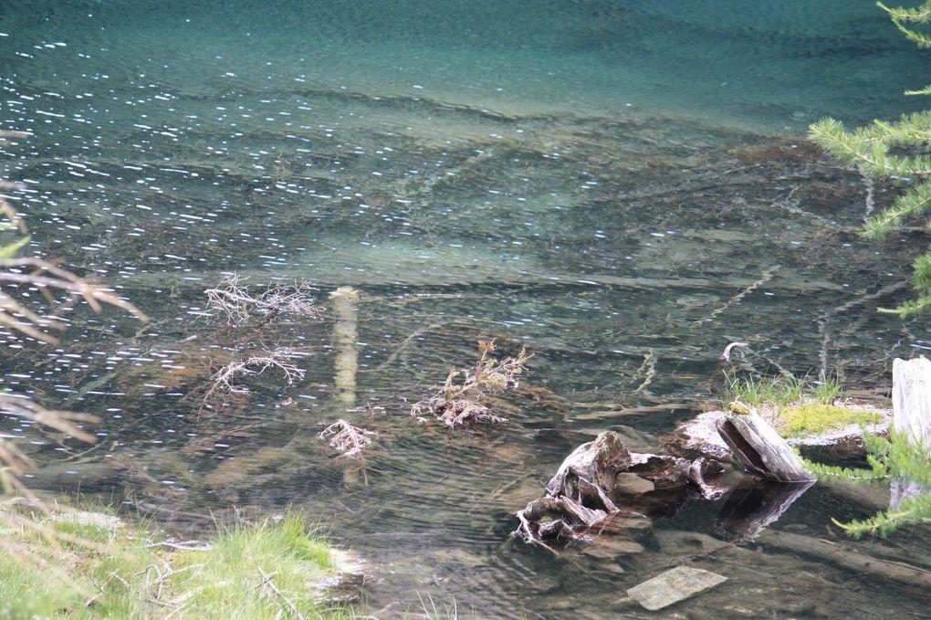 Foto dell'escursione al laghetto di Sfille da Cimalmotto (Vallemaggia) del 26.07.2010