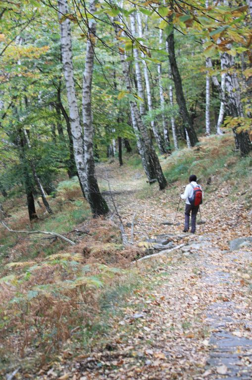 Album fotografico dell'escursione del 23.10.2010 dall'alpe Croveggia (sopra Camorino) a Ponte Capriasca, via Isone e Gola di Lago
