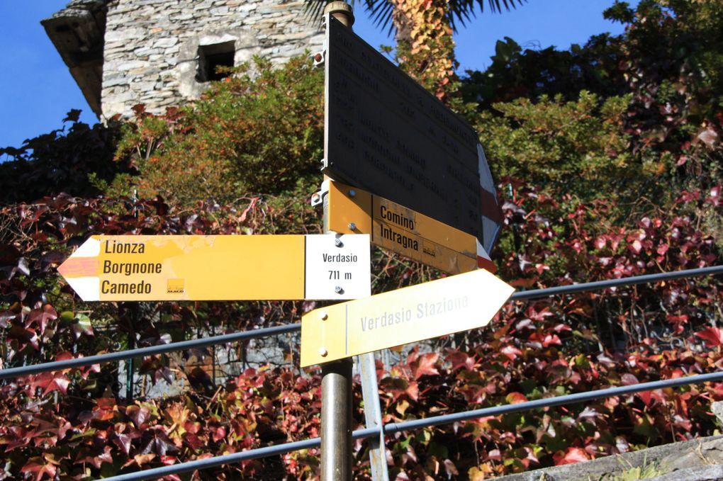 Album fotografico dell'escursione del 30.10.2011 lungo la parte svizzera della via dei Mercati, da Locarno a Camedo