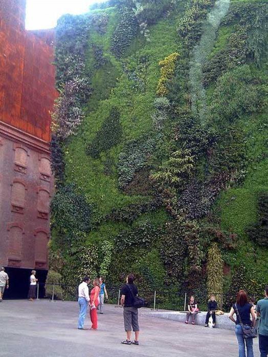 Quelques photos des Jardins Verticaux, pour montrer que, contrairement à ce qui dit l'adjointe aixoise Sylvie Cochet, le végétal peut s'insérer partout.