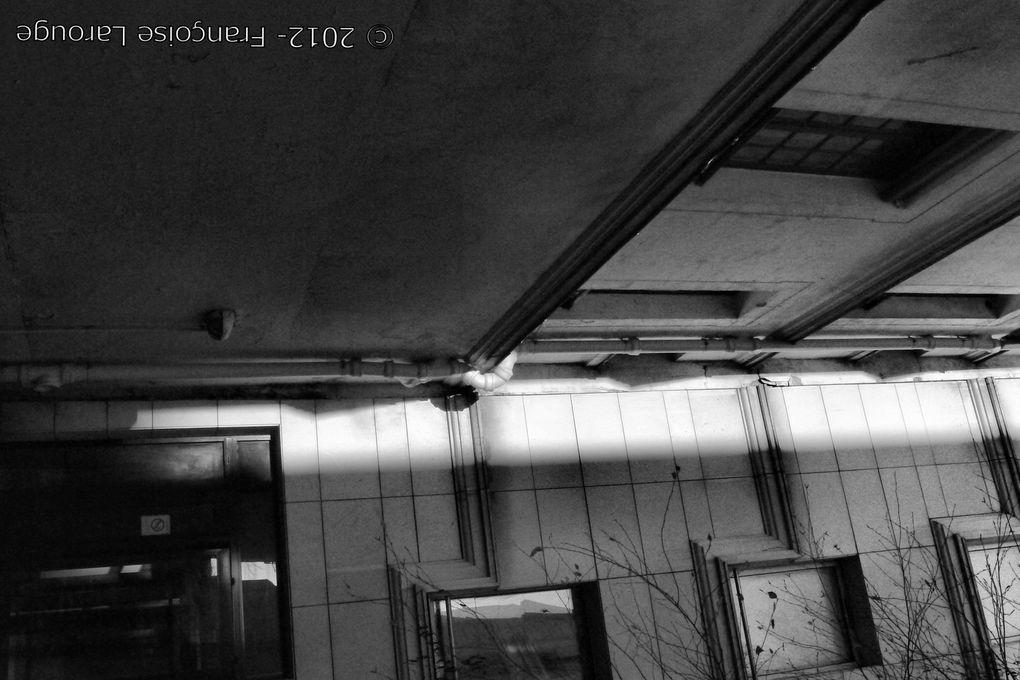 Album - Noir-et-Gris-2