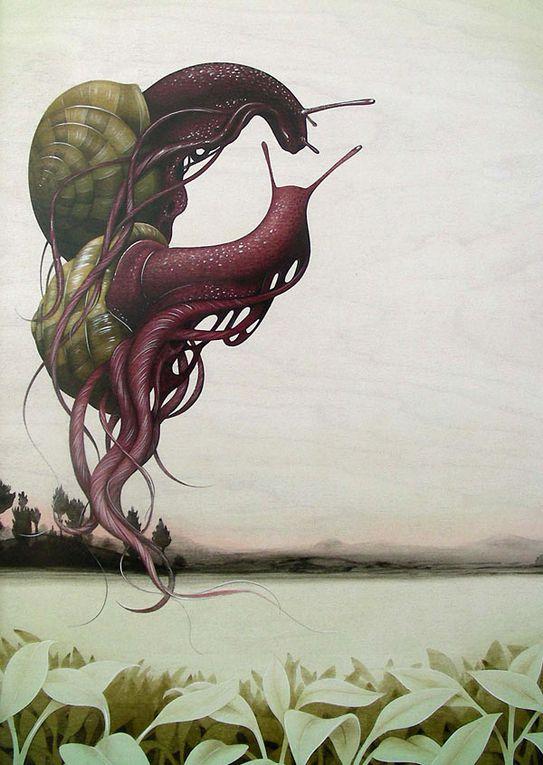 Album - Jeudi-13-Octobre-2011