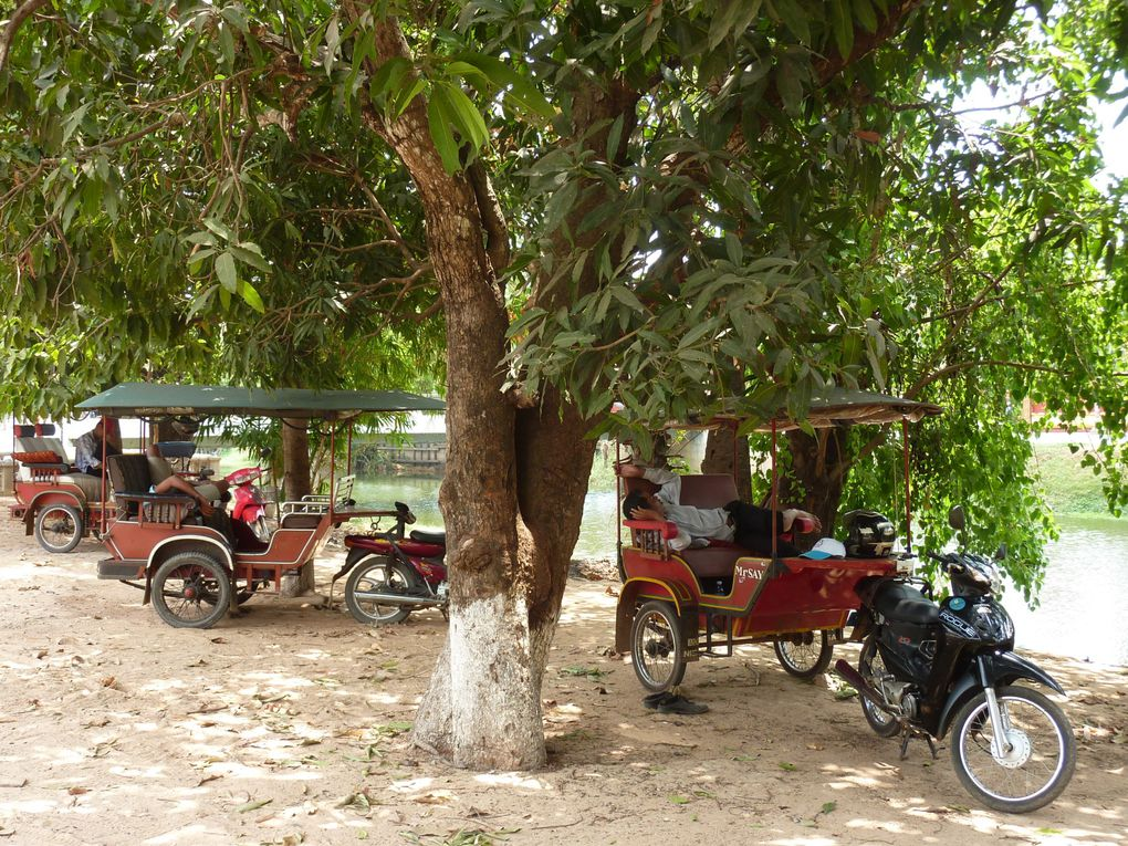 Album - cambodge--simp-reap