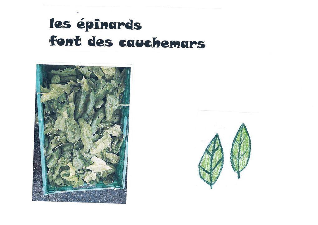Album - livre-legumes