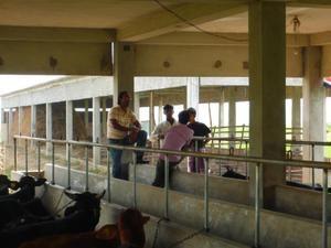 Photo de la ferme d'ICMSE à Bogra, Bangladesh