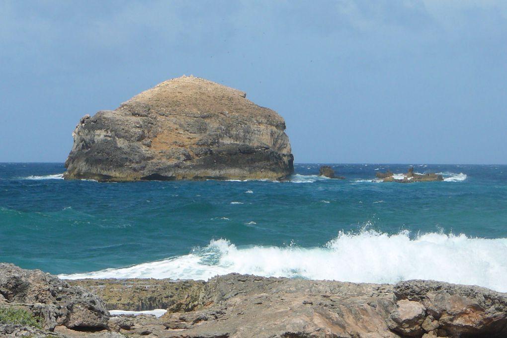 Album - Séjour-2009 Guadeloupe-En touriste...