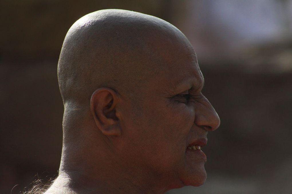 Album - art-a-delhi-portraits