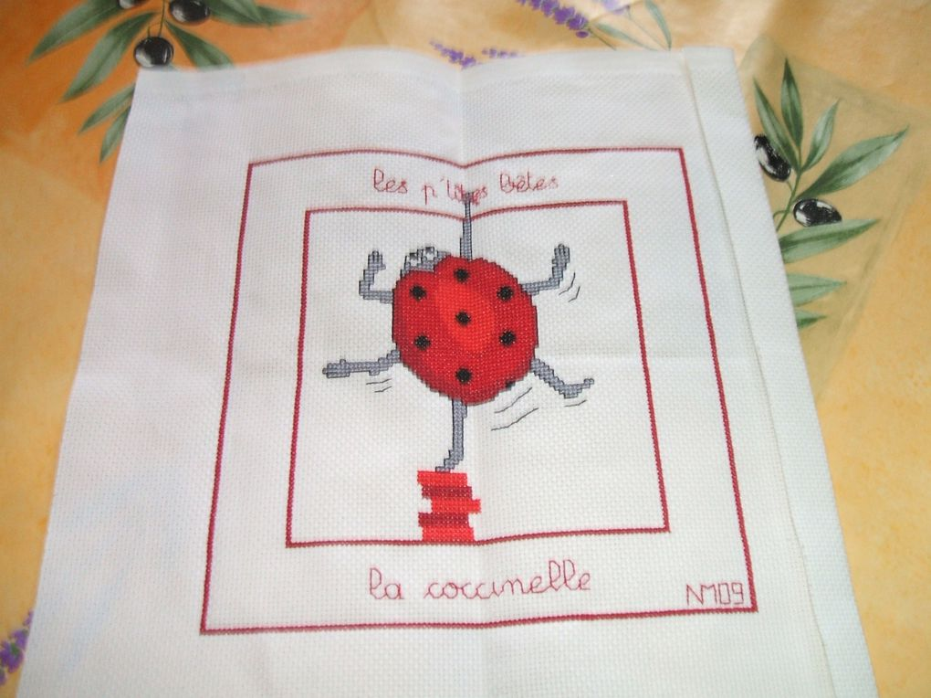 Album - plaid-anniversaire-2009-Magalie--lili62-