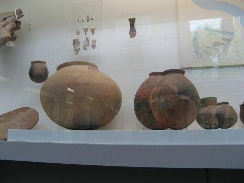 Album - Musee-prehistoire