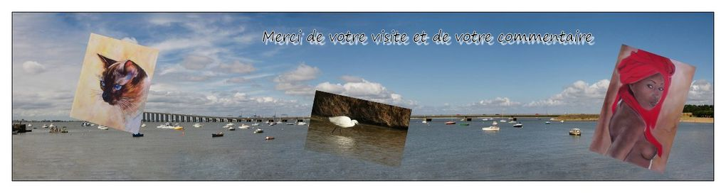 Album - Gouttes et photos diverses