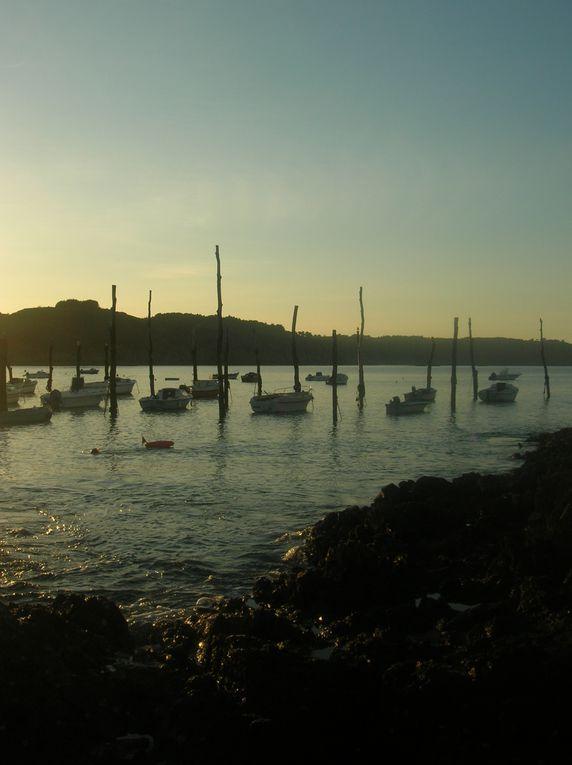 Le port de Gwin Zegal(Plouha 22) offre un abri naturel, un des derniers ports traditionnels de ce type en France, les bateaux sont attachés à des pieux en bois de près de 10m de haut, qui sont des arbres enfoncés avec leurs racines.