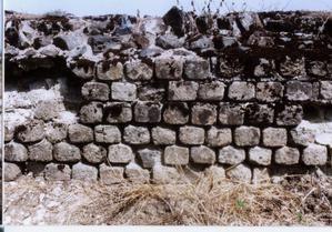 Les photos du sanctuaire gallo-romain