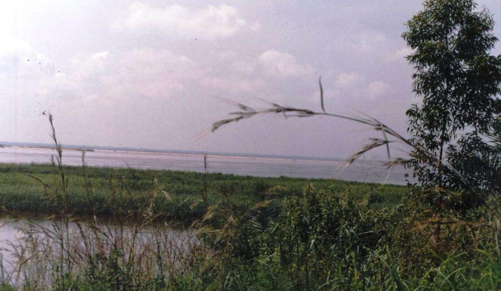 Le Congo-Brazzaville, la région du Pool durant les années 1987-1993