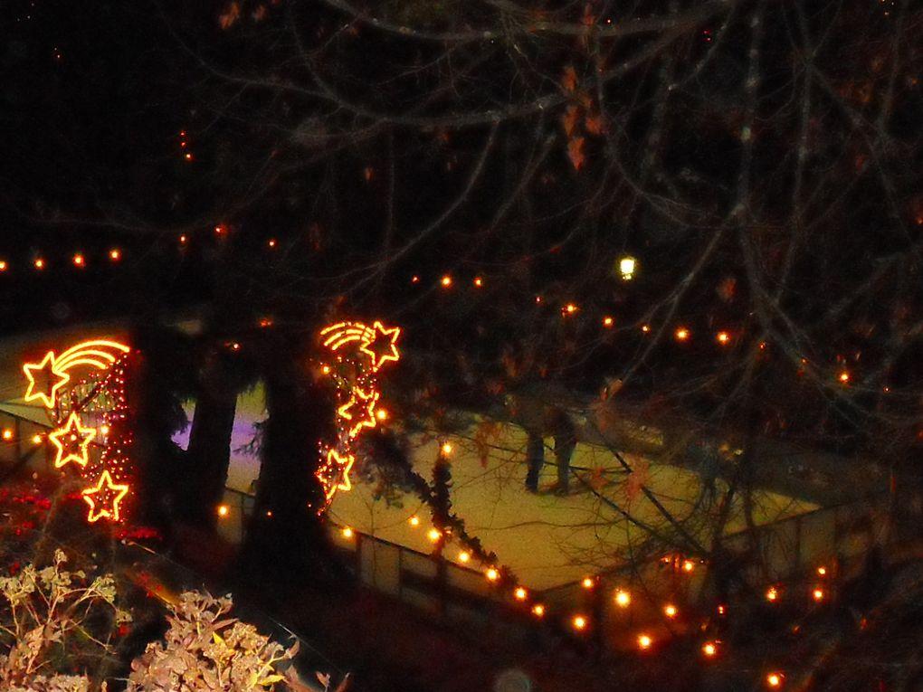Winter, verrueckte Hunde und Hase Till --*Wirrwarr*-- Weihnachten,  Fassenacht