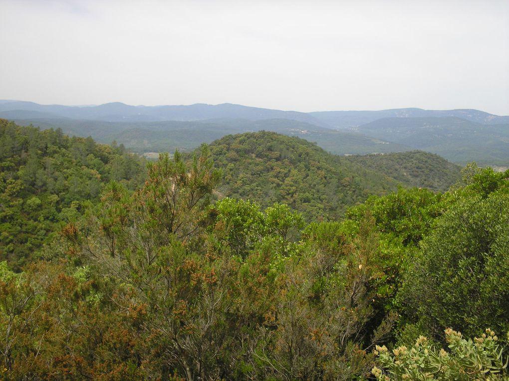 Quelques photos de la randonnée prises entre le Mont Lachens et Les Issambres.