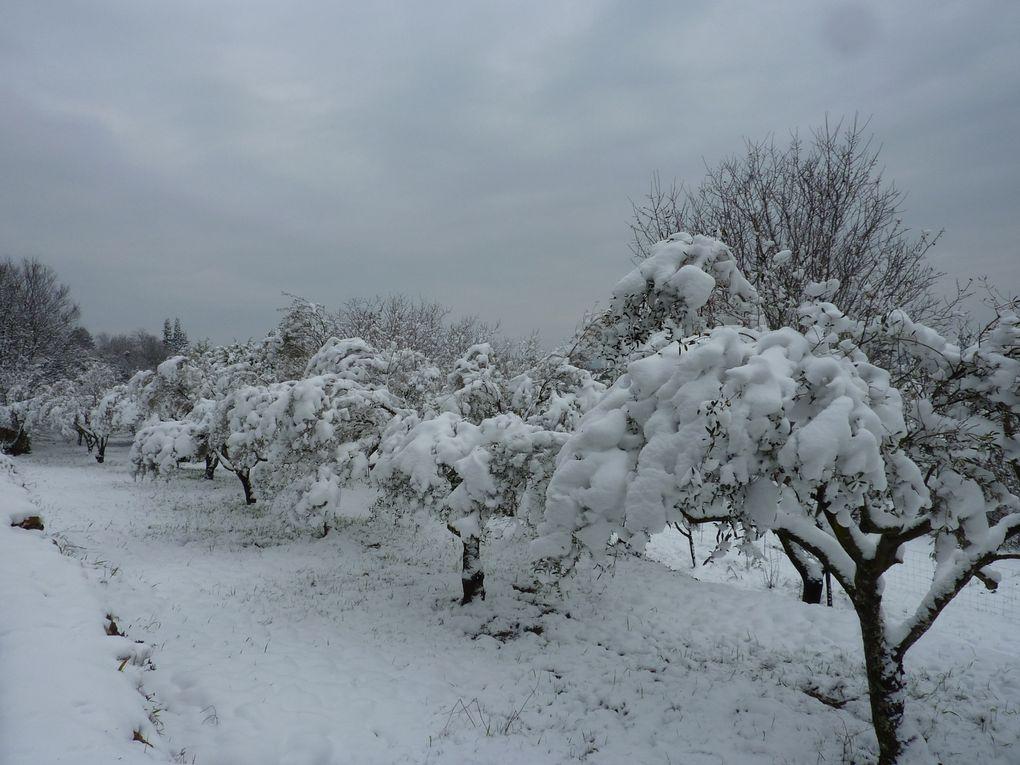 """Quelques photos du Var prises au cours de nos randonnées """"plus locales"""""""